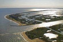 Dove il grande fiume abbraccia il mare
